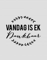 VandagIsEk_01