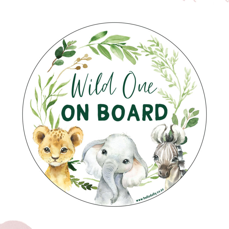 Boy Wild one on board