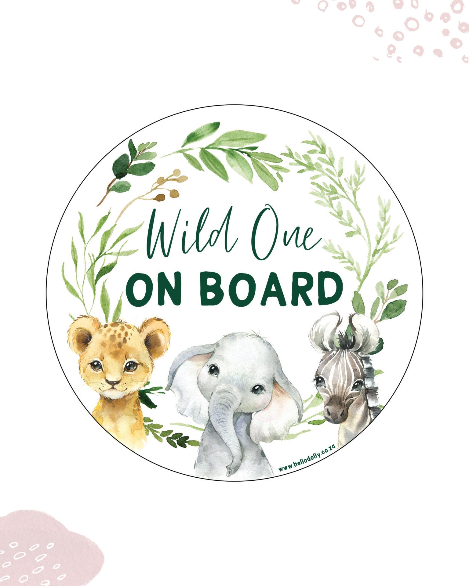 Boy Wild one on board
