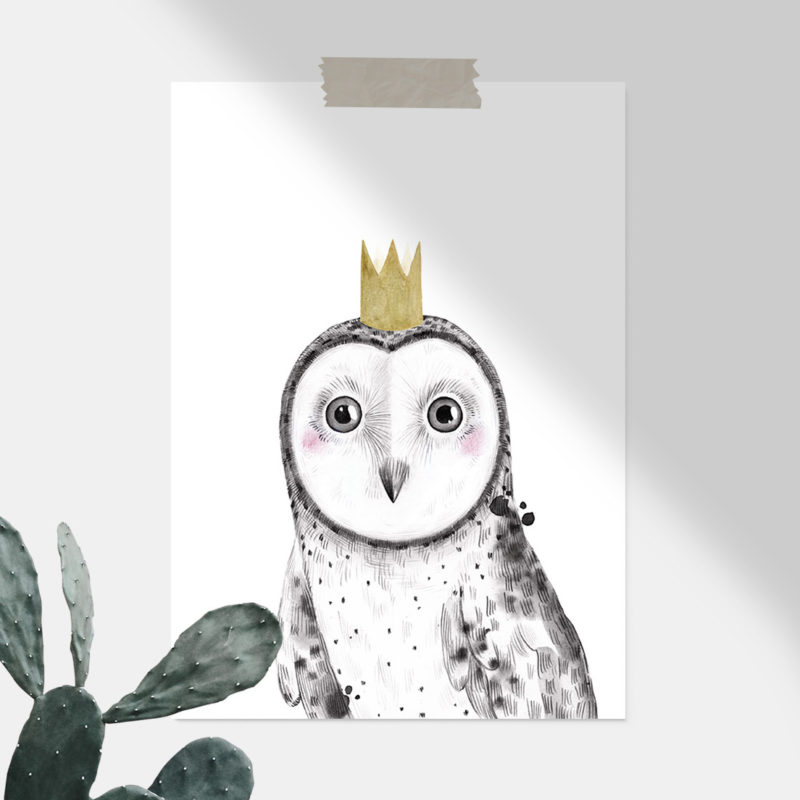Owl Woodlands animals